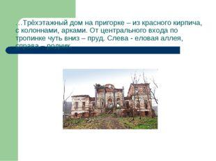 …Трёхэтажный дом на пригорке – из красного кирпича, с колоннами, арками. От ц