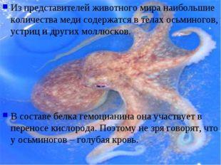 Из представителей животного мира наибольшие количества меди содержатся в тела