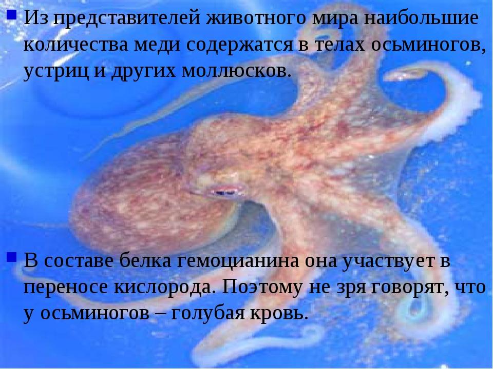 Из представителей животного мира наибольшие количества меди содержатся в тела...