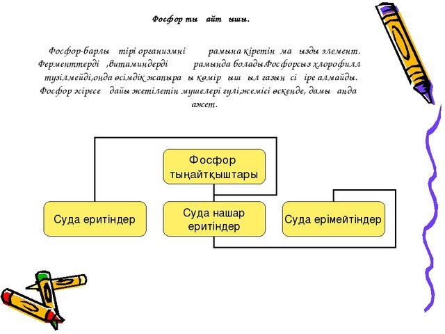 Фосфор тыңайтқышы. Фосфор-барлық тірі организмнің құрамына кіретін маңызды э...