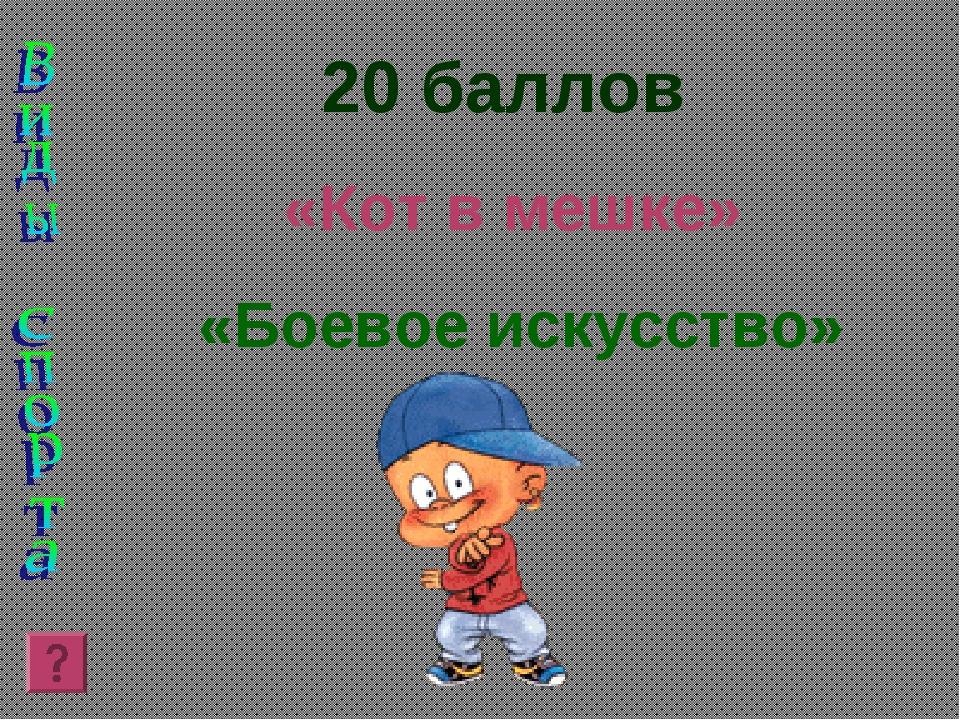 20 баллов «Кот в мешке» «Боевое искусство»