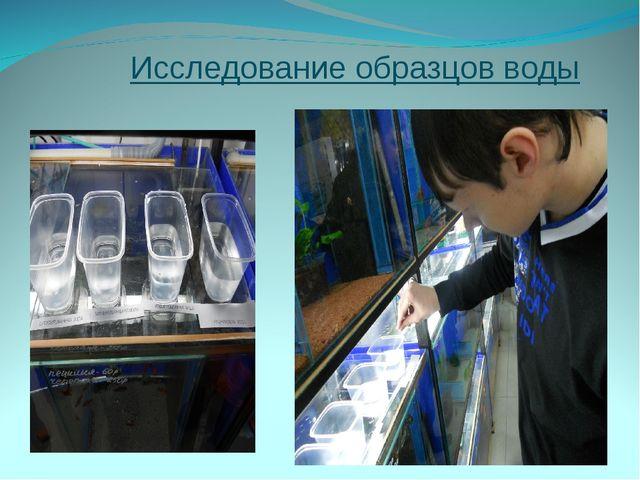 Исследование образцов воды