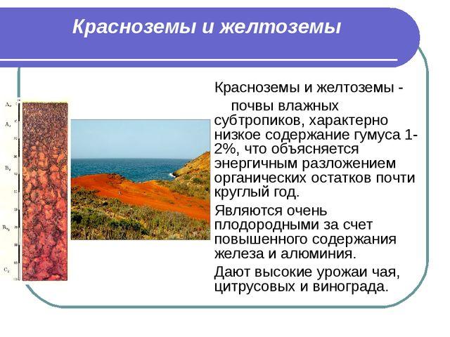 Красноземы и желтоземы Красноземы и желтоземы - почвы влажных субтропиков, ха...