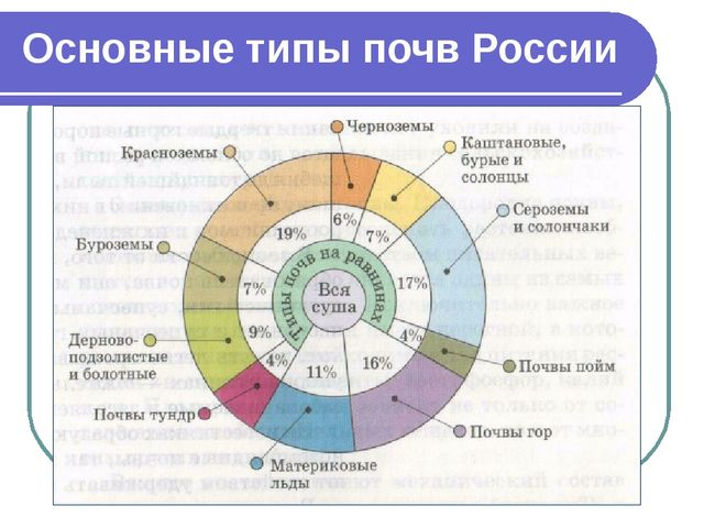 Основные типы почв России