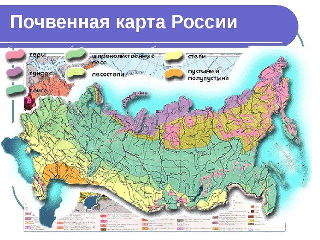 Почвенная карта России