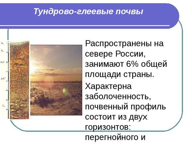 Тундрово-глеевые почвы Распространены на севере России, занимают 6% общей пло...