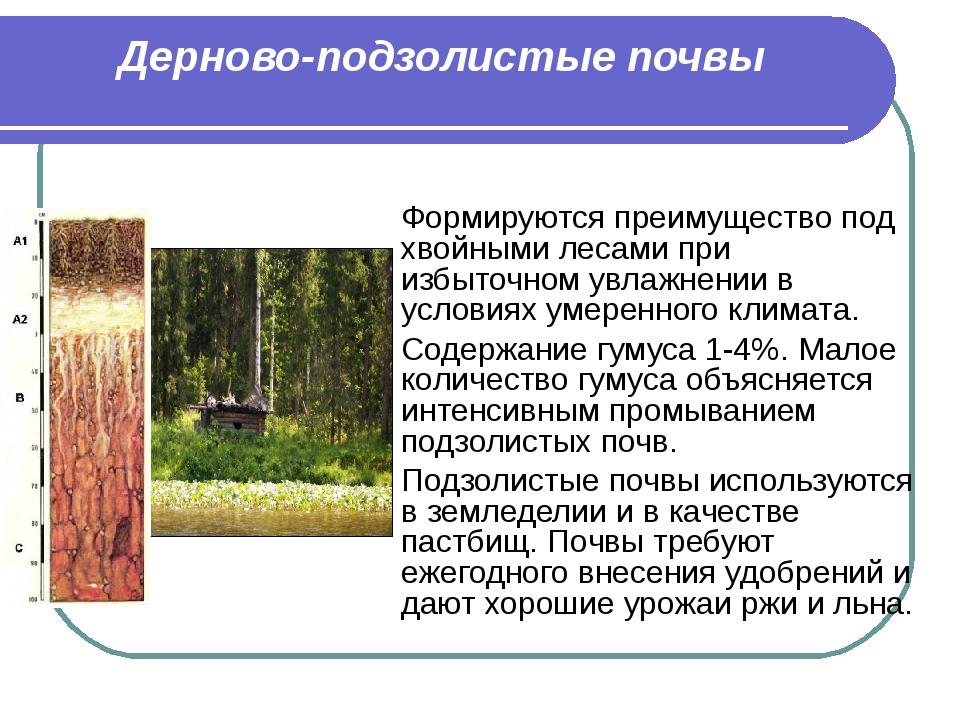 Дерново-подзолистые почвы Формируются преимущество под хвойными лесами при из...