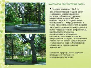 «Падовский приусадебный парк». Площадь составляет 12,3 га. Памятник природы с