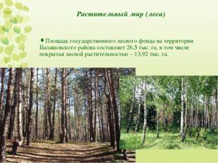 Растительный мир (леса) Площадь государственного лесного фонда на территории