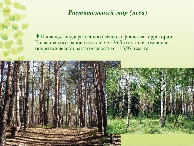 Растительный мир (леса) Площадь государственного лесного фонда на территории...