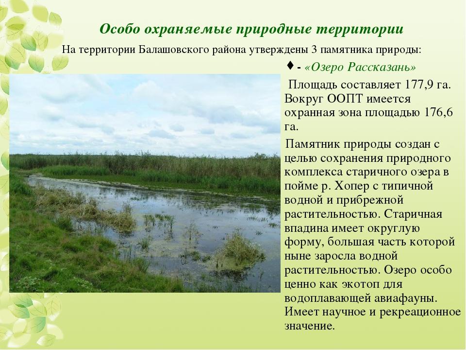 Особо охраняемые природные территории -«Озеро Рассказань» Площадь составляе...