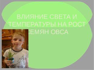 ВЛИЯНИЕ СВЕТА И ТЕМПЕРАТУРЫ НА РОСТ СЕМЯН ОВСА ПРОЕКТ Выполнил: Чумаченко Ан