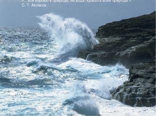«…все хорошо в природе, но вода- красота всей природы.» С. Т. Аксаков.