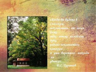 «КОГДА ВЫ БУДЕТЕ В СПАССКОМ…» «Когда вы будете в Спасском, поклонитесь от мен