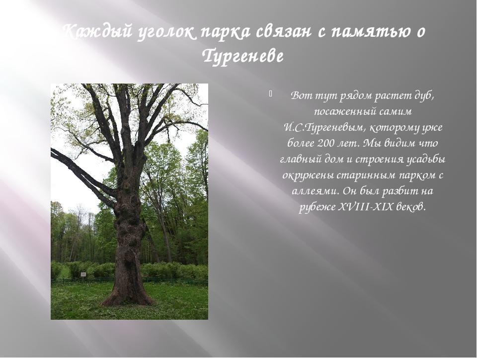 Каждый уголок парка связан с памятью о Тургеневе Вот тут рядом растет дуб, по...