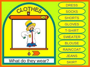 ON What do they wear? DRESS SOCKS SHORTS GLOVES T-SHIRT SWEATER BLOUSE RAINCO