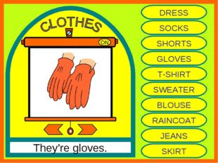 ON They're gloves. DRESS SOCKS SHORTS GLOVES T-SHIRT SWEATER BLOUSE RAINCOAT