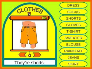 ON They're shorts. DRESS SOCKS SHORTS GLOVES T-SHIRT SWEATER BLOUSE RAINCOAT