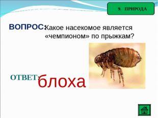 9. ПРИРОДА ВОПРОС: Какое насекомое является «чемпионом» по прыжкам? ОТВЕТ: б