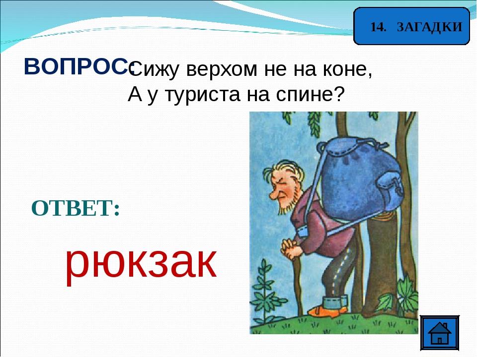 14. ЗАГАДКИ ВОПРОС: Сижу верхом не на коне, А у туриста на спине? ОТВЕТ: рюк...