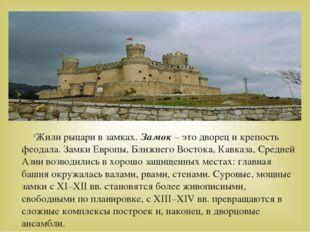 Жили рыцари в замках. Замок – это дворец и крепость феодала. Замки Европы, Бл