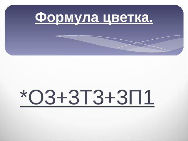 Формула цветка. *О3+3Т3+3П1