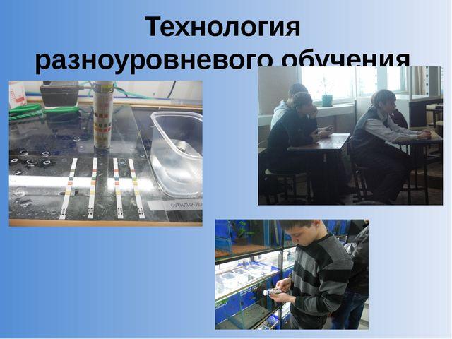 Технология разноуровневого обучения