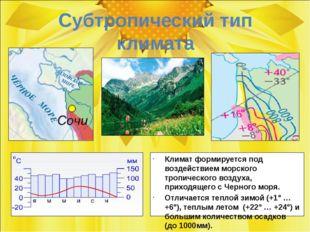 Субтропический тип климата Климат формируется под воздействием морского тропи