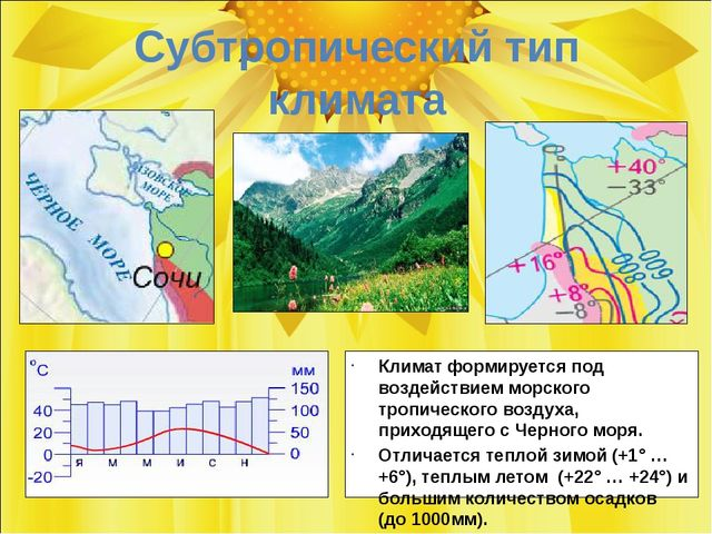 Субтропический тип климата Климат формируется под воздействием морского тропи...