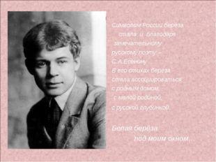 Символом России берёза стала и благодаря замечательному русскому поэту – С.А