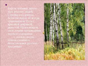 Береза любимое дерево всех русских людей. Стройную кудрявую, белоствольную,