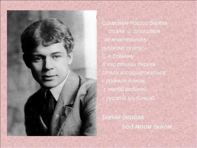 Символом России берёза стала и благодаря замечательному русскому поэту – С.А...