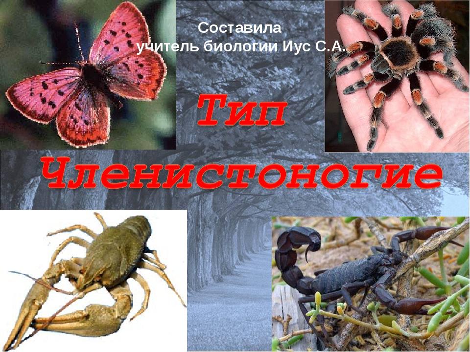 Составила учитель биологии Иус С.А.