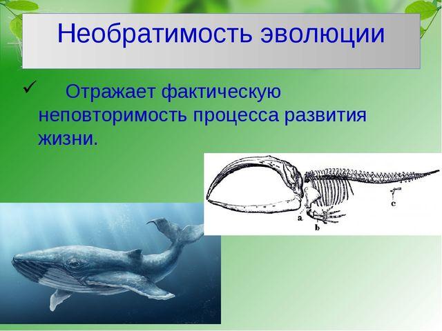 Необратимость эволюции Отражает фактическую неповторимость процесса развития...