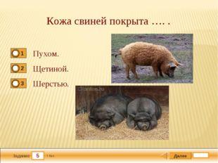 5 Задание Кожа свиней покрыта …. . Пухом. Щетиной. Шерстью. Далее 1 бал.