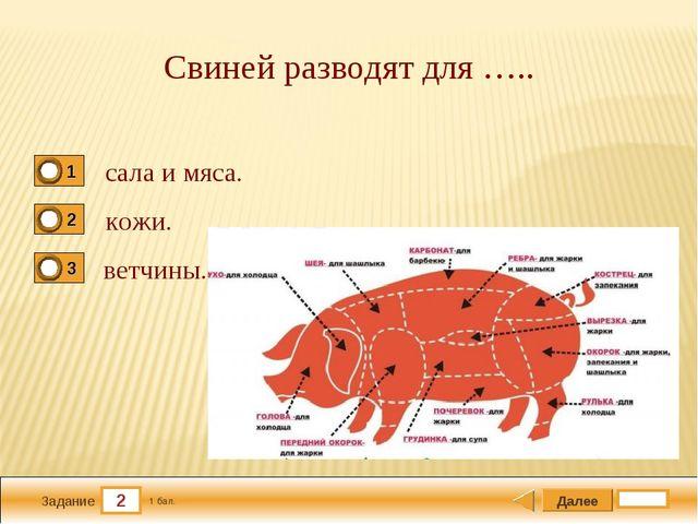 2 Задание Свиней разводят для ….. сала и мяса. кожи. ветчины. Далее 1 бал.