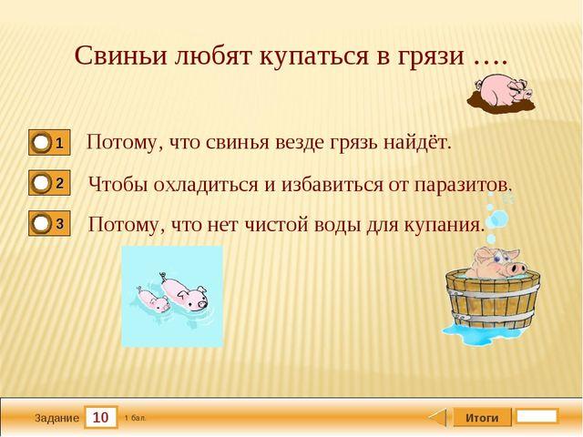 10 Задание Свиньи любят купаться в грязи …. Потому, что свинья везде грязь на...