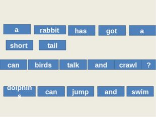 a rabbit has got a short tail can birds talk and crawl ? dolphins can jump a