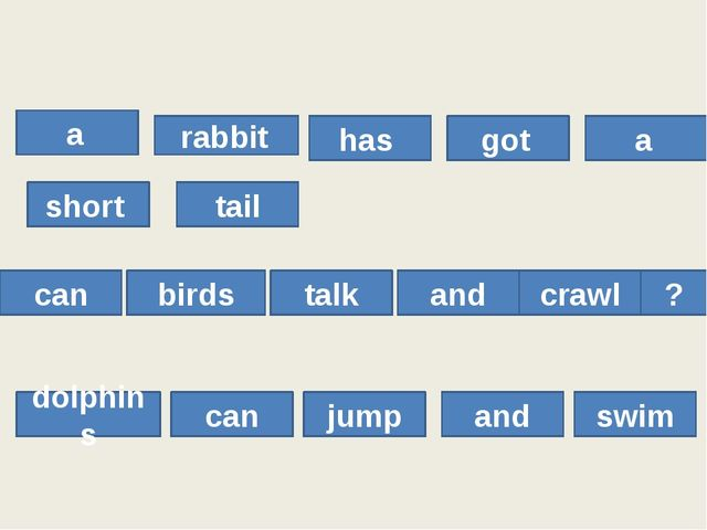 a rabbit has got a short tail can birds talk and crawl ? dolphins can jump a...