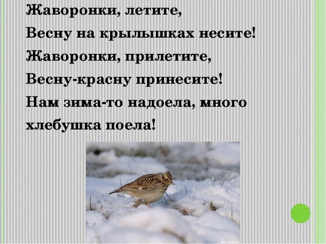Жаворонки, летите, Весну на крылышках несите! Жаворонки, прилетите, Весну-кра...