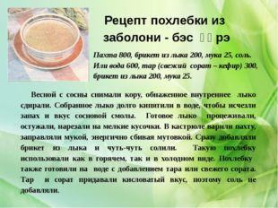 Рецепт похлебки из заболони - бэс үɵрэ Весной с сосны снимали кору, обнаженно