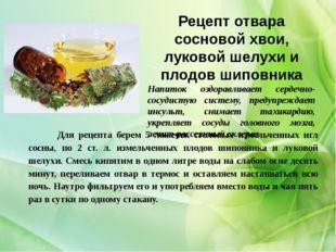 Рецепт отвара сосновой хвои, луковой шелухи и плодов шиповника Напиток оздора