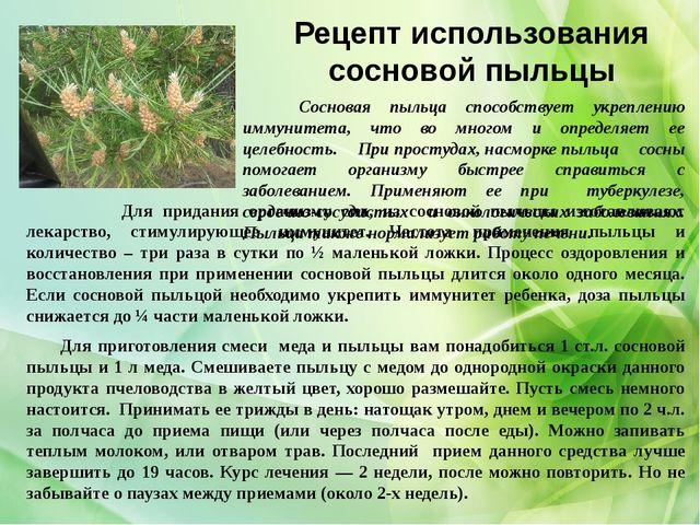 Рецепт использования сосновой пыльцы Сосновая пыльца способствует укреплению...