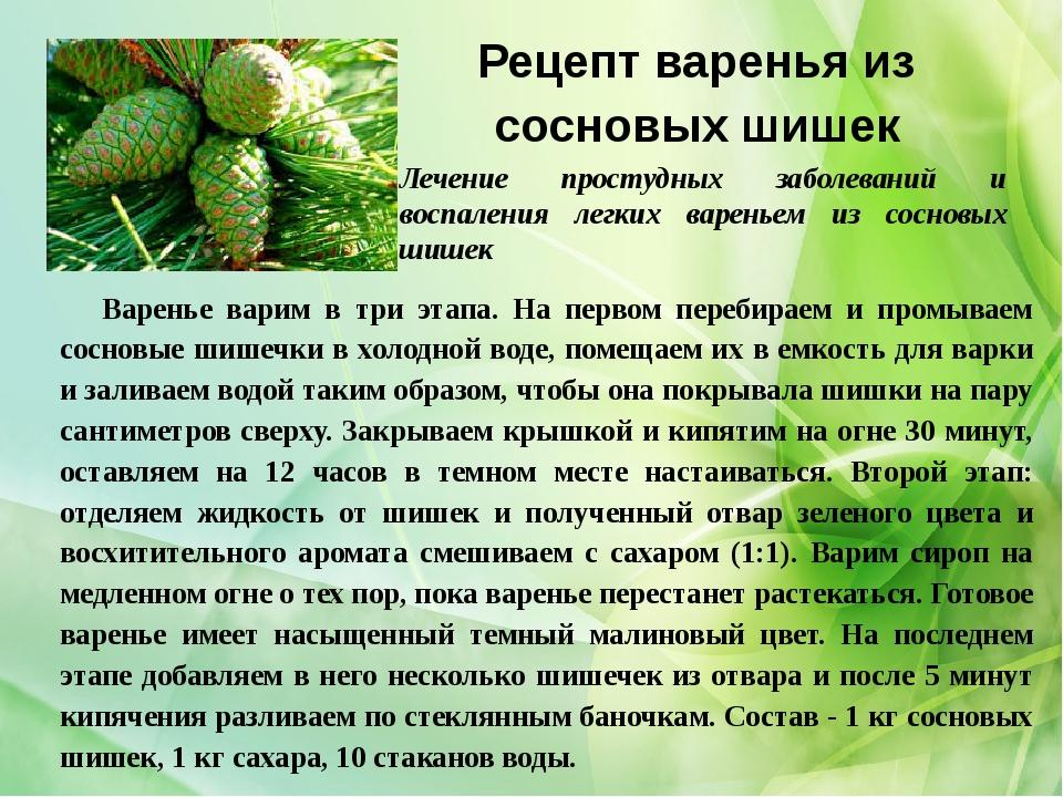 Рецепт варенья из сосновых шишек Варенье варим в три этапа. На первом перебир...