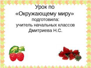 Урок по «Окружающему миру» подготовила: учитель начальных классов Дмитриева Н