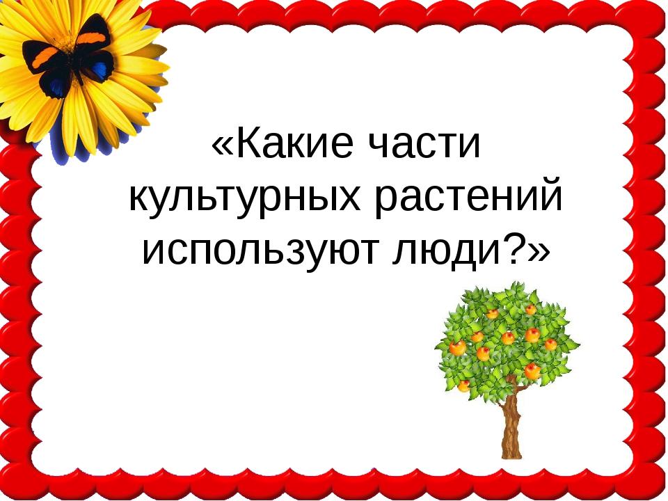 «Какие части культурных растений используют люди?»