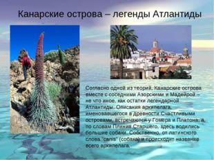 Канарские острова – легенды Атлантиды Согласно одной из теорий, Канарские ост