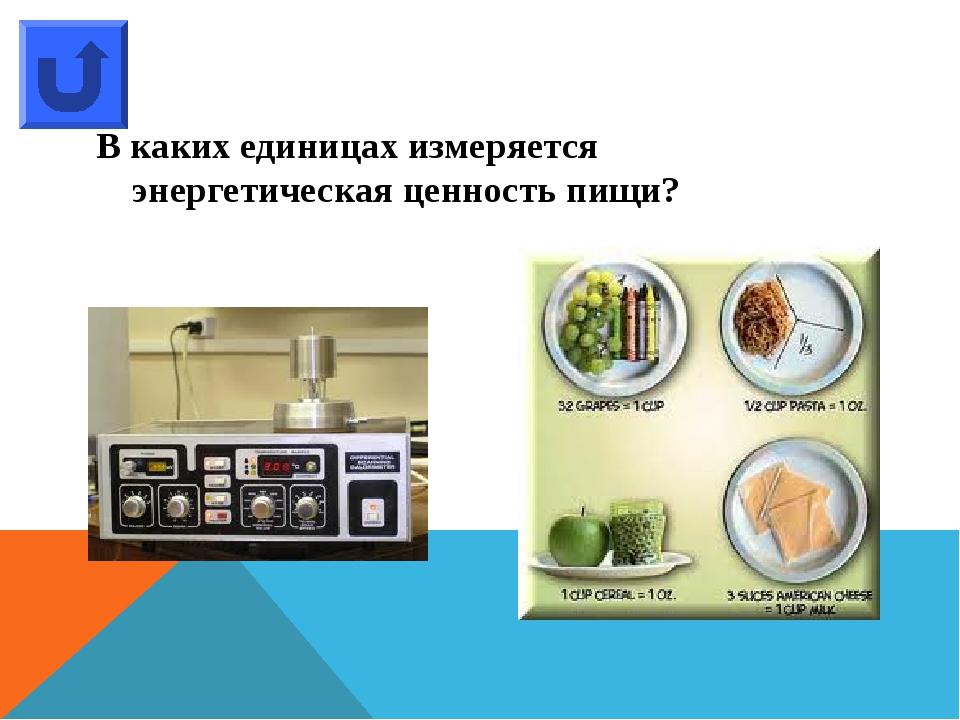 Какой овощ на Руси называют «зеленой лепешкой»?