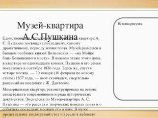 Музей-квартира А.С.Пушкина Единственная в Петербурге мемориальная квартира А.