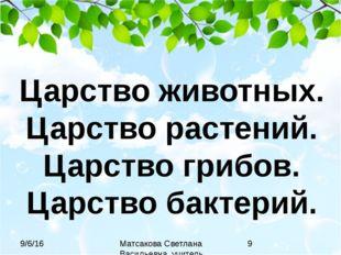 Царство животных. Царство растений. Царство грибов. Царство бактерий. Матсако